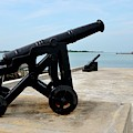 Bank Of Canons Protecting Jaffna Sea Lanes Across From Fort Hammenhiel Sri Lanka by Imran Ahmed