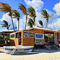 Bankie Banxs Dunes Preserve Beach Bar by Ola Allen