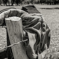 Barbed Wire Boot by Paul Quinn