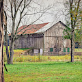 Barn by Michelle Wittensoldner