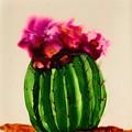Barrel Cactus  by Marcia Breznay