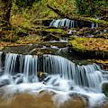 Barton Mill Run Waterfalls by Thomas R Fletcher
