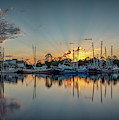 Bayou Rays Panorama by Brad Boland