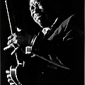 Bb King Performing by Tom Copi