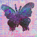 Be Happy Butterfly by Lisa Crisman