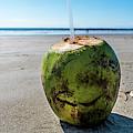 Beach Coconut by Bryce Stewart