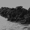 Beach Rock Jetty by Dale Powell
