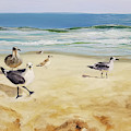 Beach Stroll by Susan E Hanna
