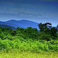 Beahms Gap On Shenandoah National Park's Appalachian Trail by Raymond Salani III