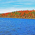 Beautiful Autumn Colors On Walden Pond Pano Concord Ma by Toby McGuire