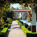 Beautiful Courtyard Getty Villa  by Chuck Kuhn