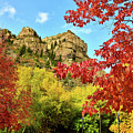 Beautiful Fall Colors At Hanging Lake Rest Area by Ray Mathis