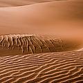 Beautiful Namib Desert 2 by Lyl Dil Creations