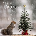 Believe In The Magic Of Christmas Squirrel Square by Terry DeLuco