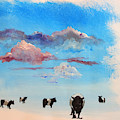 Belted Galloway Cows Under Blue Sky With Clouds by Mike Jory