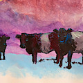 Belties Cattle Painting With Atmospheric Purple Blue Backgorund by Mike Jory