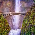 Benson Footbridge At Multnomah Falls by Lynn Bauer