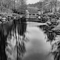 Bentonville Crystal Bridges Art Museum - Arkansas Black And White by Gregory Ballos