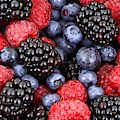 Berries Of The Forest by Top Wallpapers