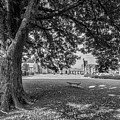 Berry College Landscape by University Icons