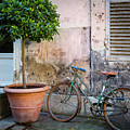Bicycle In Paris by Brian Jannsen