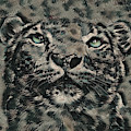 Big Cat by Jessica Bell