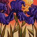 Big Iris I by John Newcomb