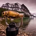 Binoculars by Peter OReilly