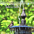 Bird Bath Quote by JAMART Photography