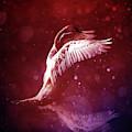 Bird Kingdom 7 Bloodline by Johan Lilja