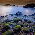 Bird Rock Lajolla II by Bill Thomas