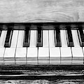Black And White Piano by Elisabeth Lucas