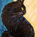Black Cat In Sunlight by Jeannine Selig