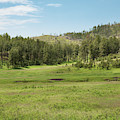 Black Hills Range Land by John M Bailey