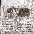 Black Ivory Issue 1b70c by Artist Dot