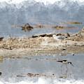 Black Neck Stilt Combing Shores At Salton Sea In Digital Watercolor by Colleen Cornelius