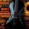 Black Violin And Old Books by Garry Gay