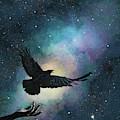 Blackbird Singing In The Dead Of Night by Nikki Marie Smith