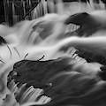 Blackstone River Xxviii Bw by David Gordon