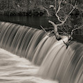 Blackstone River Xxxv Toned by David Gordon