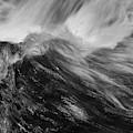 Blackstone River Xxxvii Bw by David Gordon