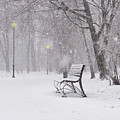 Blizzard In The Park by Juli Scalzi