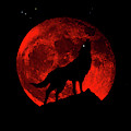 Blood Red Wolf Supermoon Eclipse 873j by Ricardos Creations