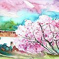 Blossoming Almond Tree On The Costa Blanca by Miki De Goodaboom