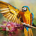 Blue And Gold Macaw - Painted by Ericamaxine Price