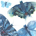 Blue Butterflies by Dawn Derman