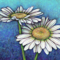 Blue Daisy Duo by Amy E Fraser
