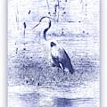 Blue Heron In Blue Digital Art With White Border by Carol Groenen