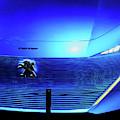 Blue Instinct by Rick Locke