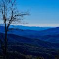 Blue by Kristi Swift